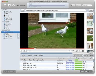 SWF & FLV Player 4.3.8