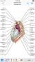 Скачать IMAIOS e-Anatomy