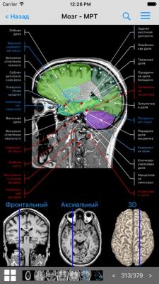 IMAIOS e-Anatomy 6.7.2