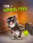 Скачать Говорящий кот Том