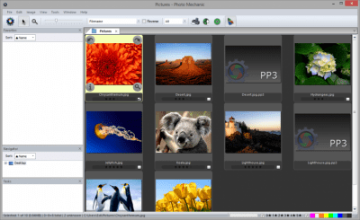 Photo Mechanic 5.0 Build 19695