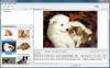 Скачать Web Image Collector