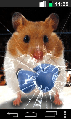 Funny Hamster Cracked Screen 1.1.9