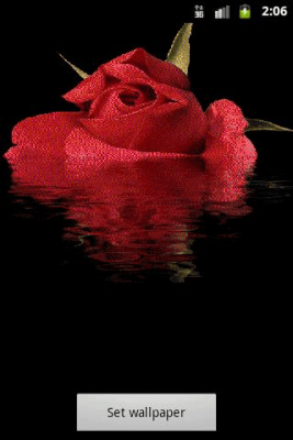 Rose Reflected In Water 1.0