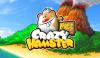 Скачать Crazy Hamster Free