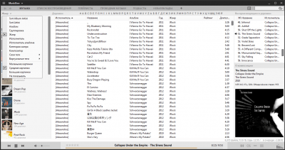 MusicBee Portable 3.2.6827