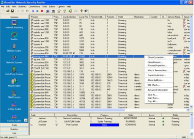Network Security Auditing 3.0.18