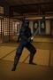 Скачать Ninja Nagato