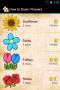 Скачать Как рисовать: Цветы