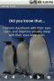 Скачать Animal Facts