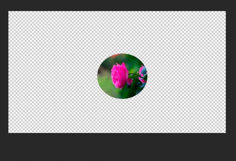 Как вырезать круг в Adobe Photoshop